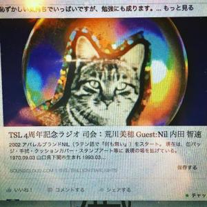 nil_radio_tsl_2017